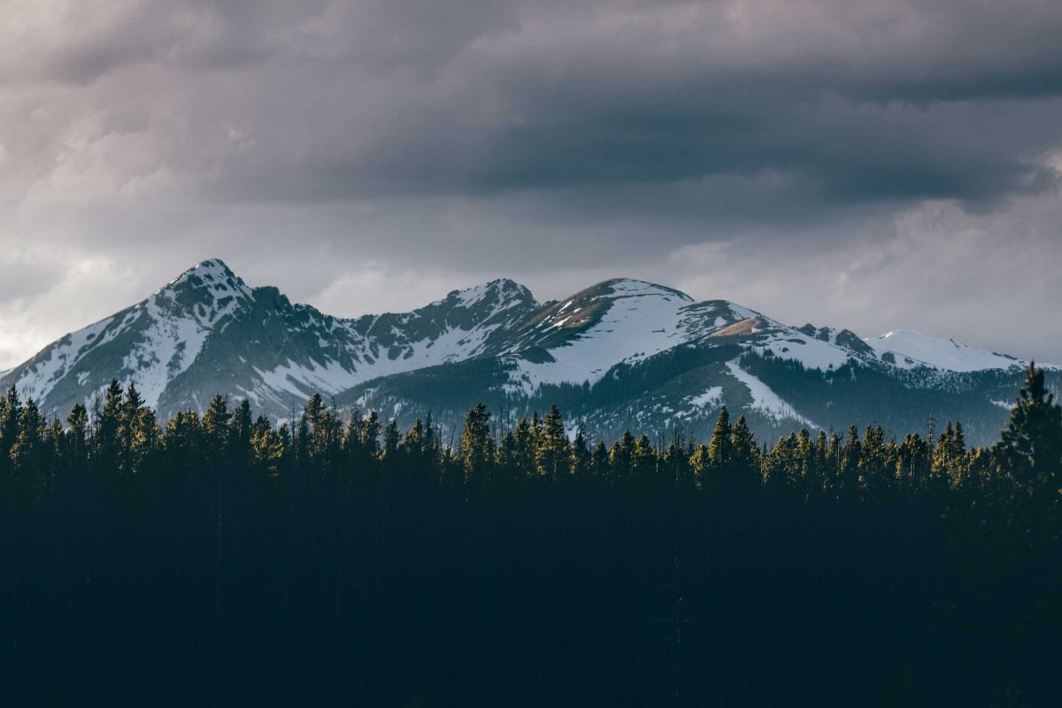 mountains behind forest